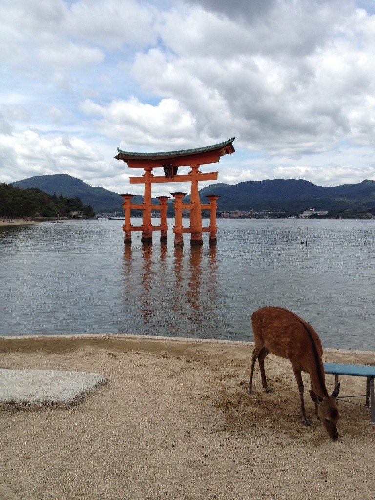 Deer Standing Peacefully with Torii Gate in the Background