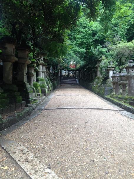 Nara after the rain