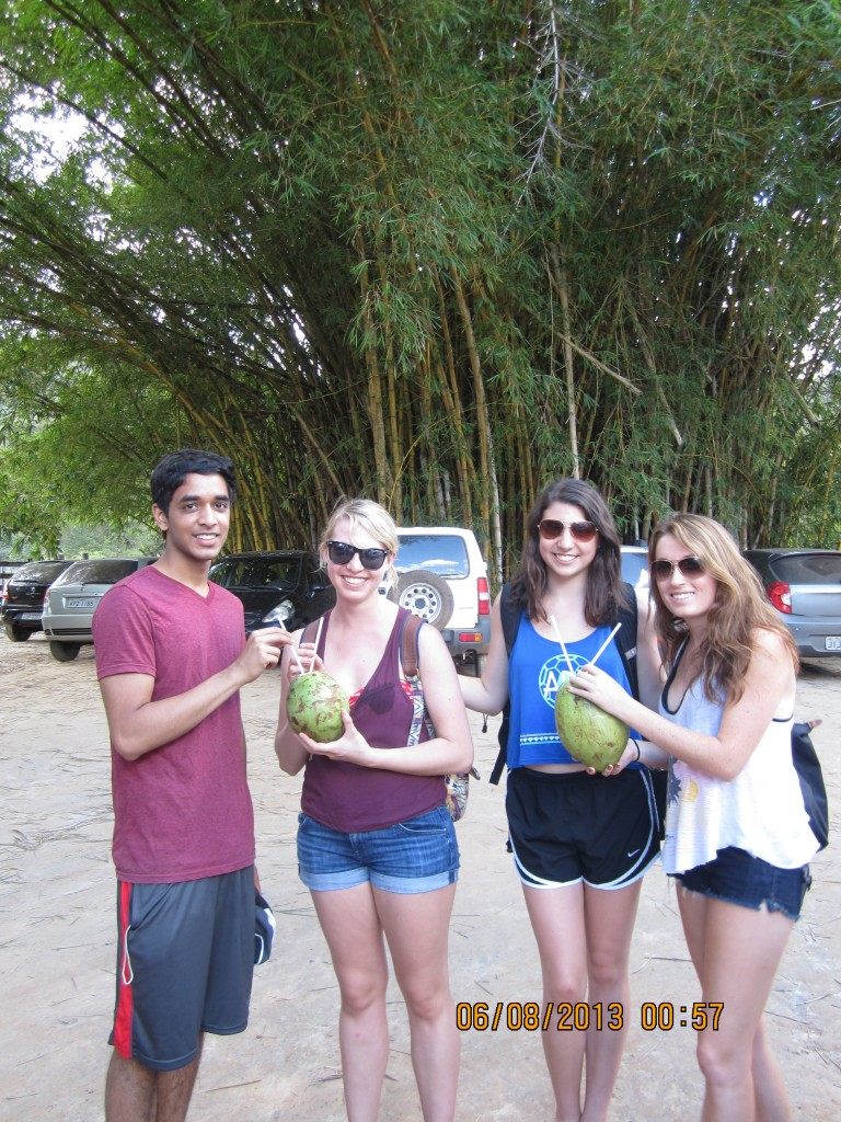 Lucy, second from left, accompanied by Rocky, Jodie and Gracie sip fresh coconut water.
