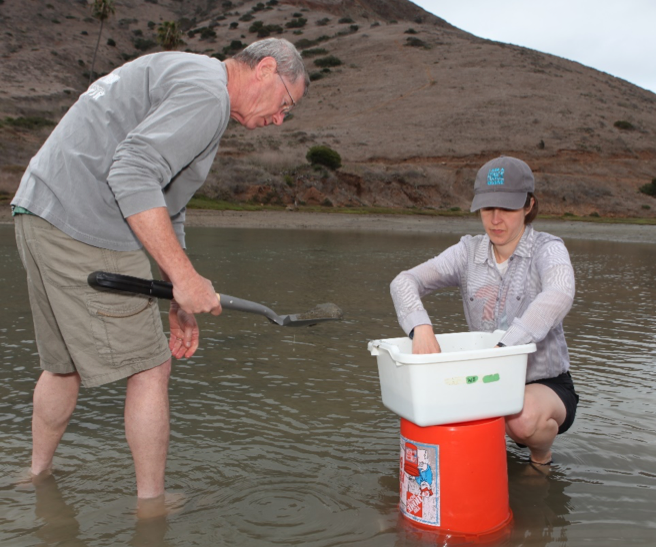 My advisor, Dr. Will Berelson, and I collecting sand from Cat Harbor, three miles from the Wrigley Institute on Catalina Island.