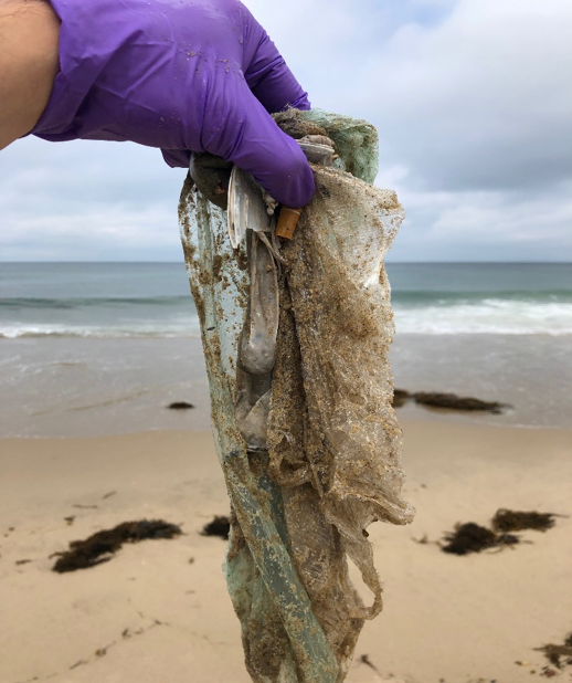 These are some plastic pollutants collected by the Fieser Group at Hermosa Beach through the Heal the Bay: Adopt–A–Beach Initiative.
